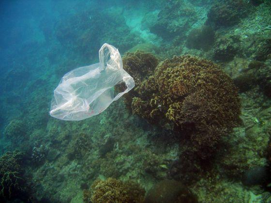 海域漂流的塑膠垃圾