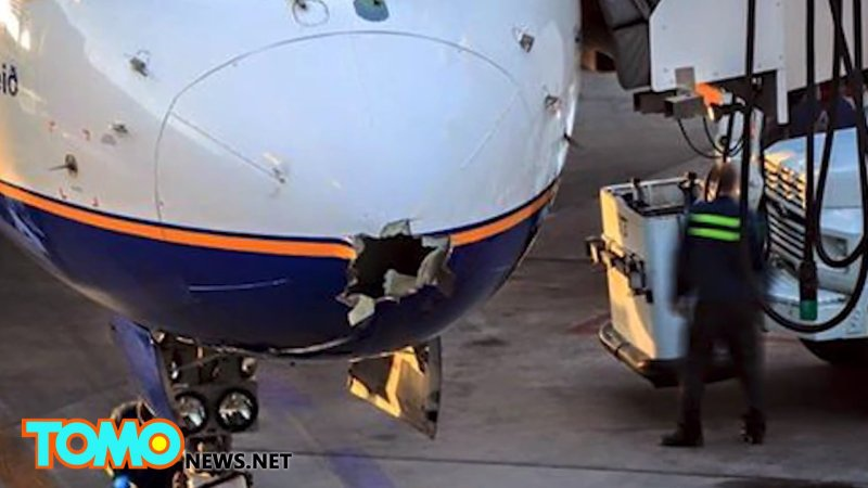 冰島客機2