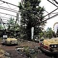 amusement park43