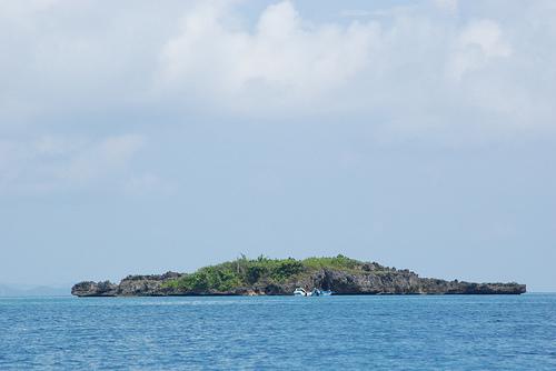 crocodile-island