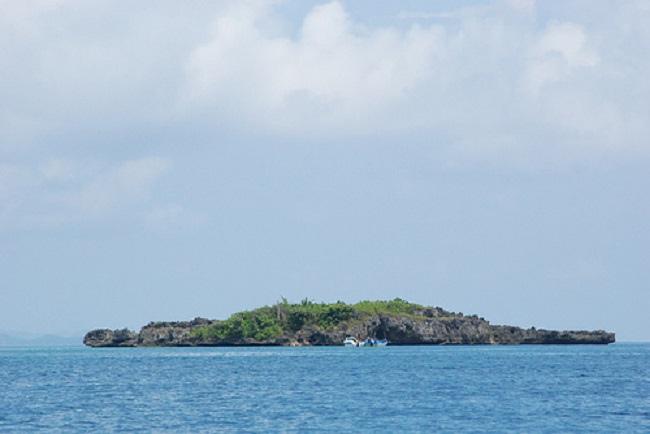 crocodile-island3