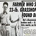 grasshopper52