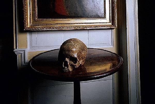 skull73