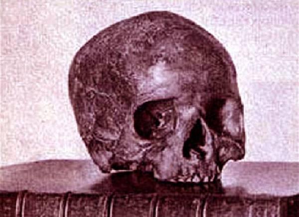 skull-bettiscombe