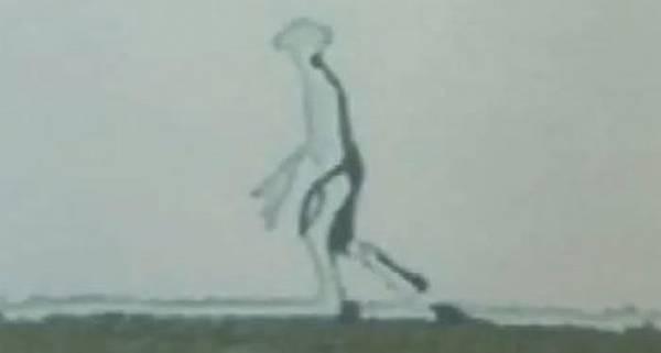 嘉明湖外星人01