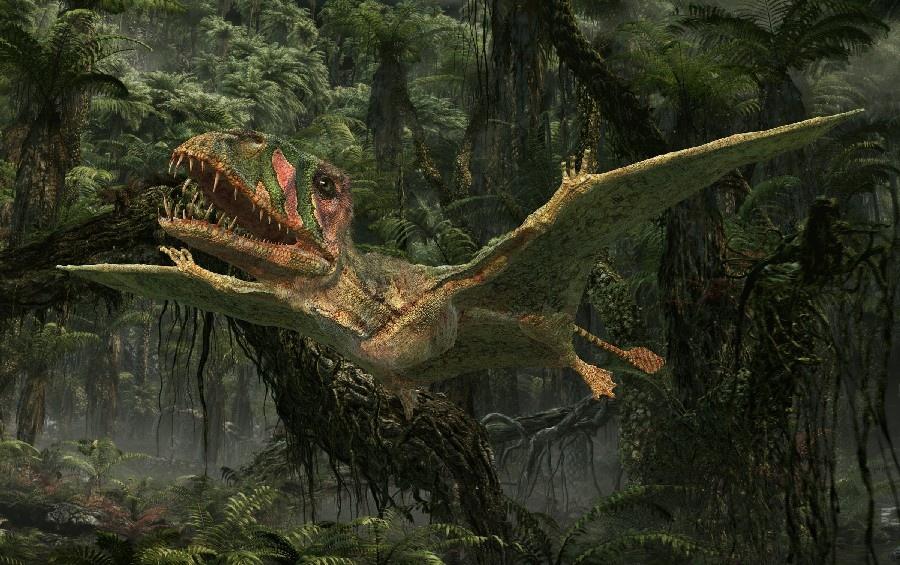 Dimorphodon_e70a