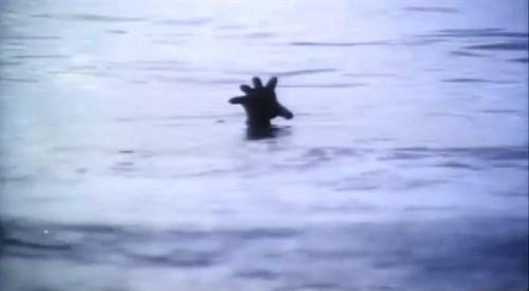 溺水時的自救0