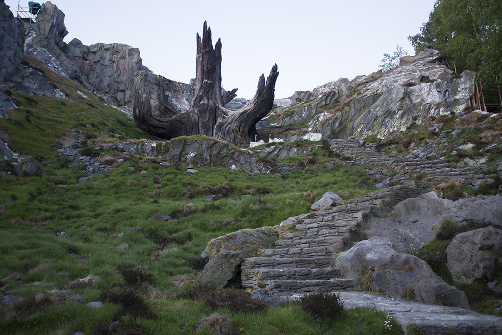 Ahch-To temple-of-the-jedi-tree