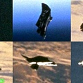 Black_knight_Satellite_9