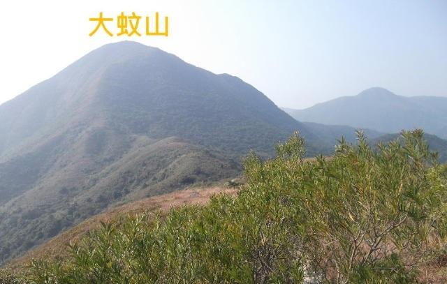 Tai Mun Shan