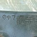 P1040161.JPG