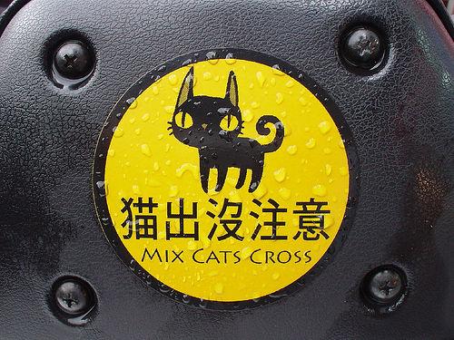 MIX貓出沒注意.jpg