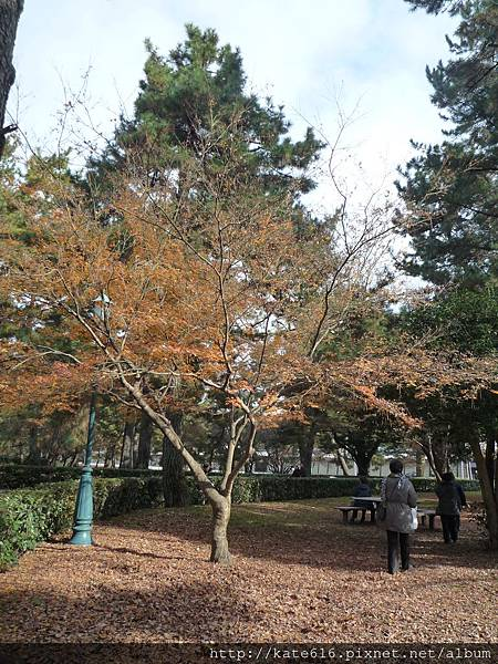 20121217 Kyoto 038