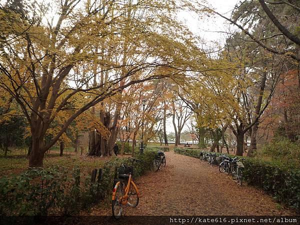 20121217 Kyoto 090