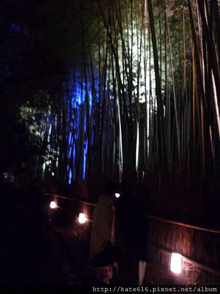 20121217 Kyoto 198