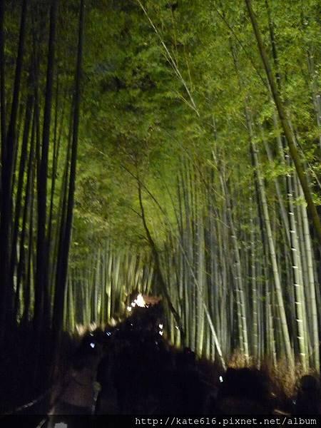 20121217 Kyoto 202