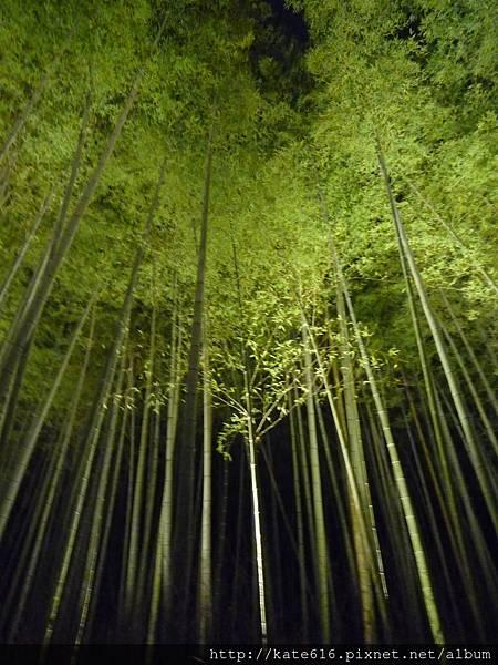 20121217 Kyoto 215