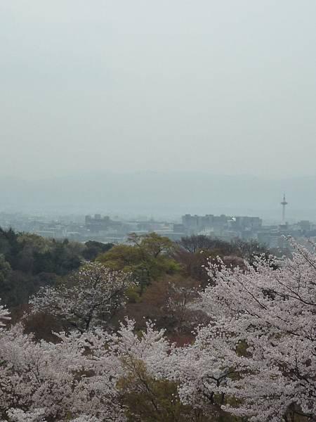 20110411 清水寺 088.JPG