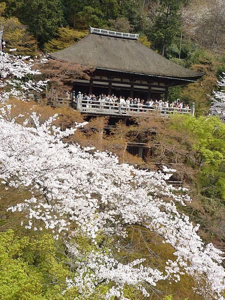 20110411 清水寺 098.JPG