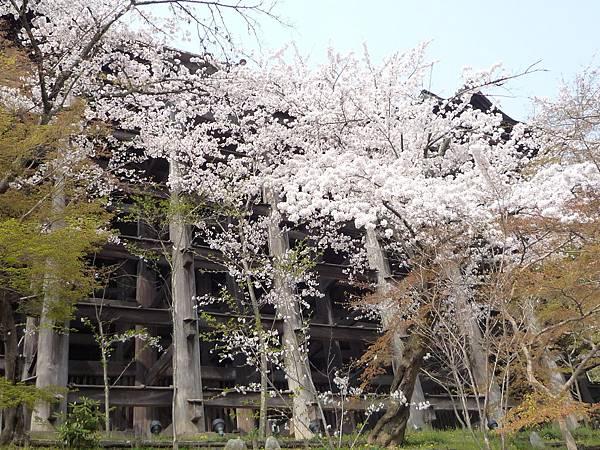 20110411 清水寺 142.JPG