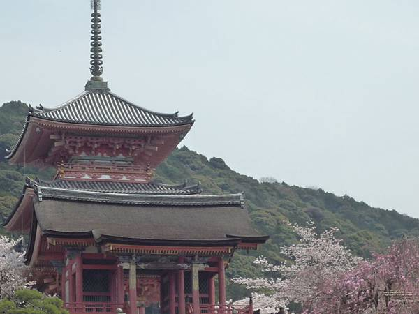 20110411 清水寺 069.JPG