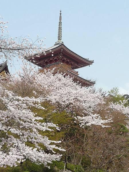 20110411 清水寺 154.JPG