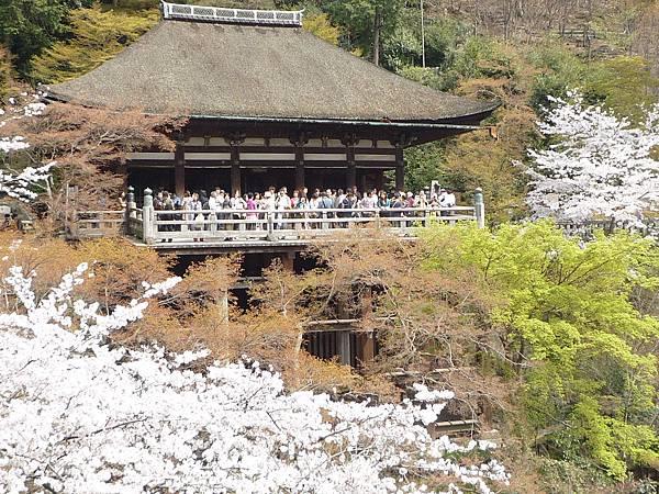 20110411 清水寺 097.JPG
