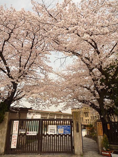 20110411 清水寺 006.JPG