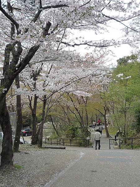 20110411 清水寺 133.JPG