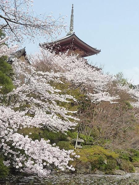 20110411 清水寺 148.JPG