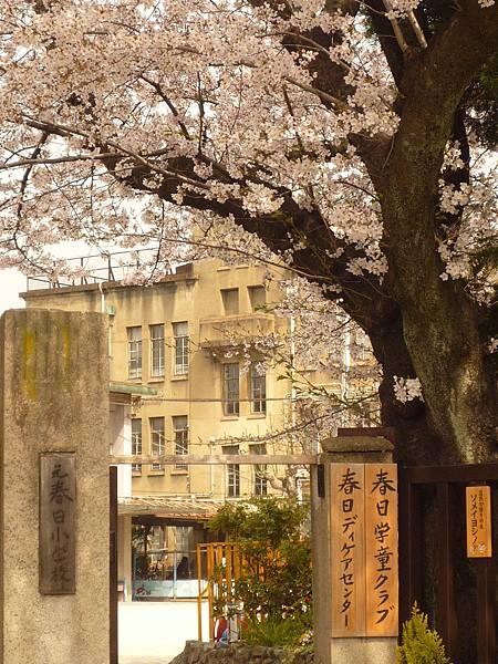 20110411 清水寺 007.JPG