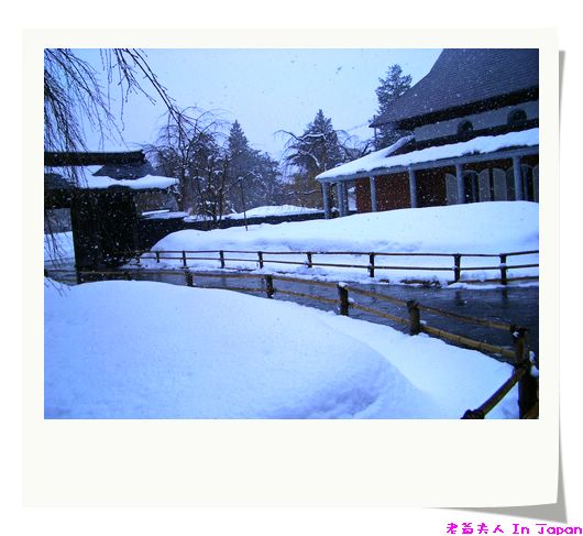 這天雪挺大的