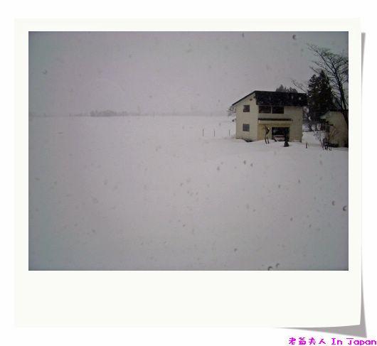 外面好像本來是湖