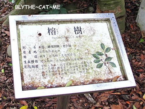 五福臨門 (5).JPG