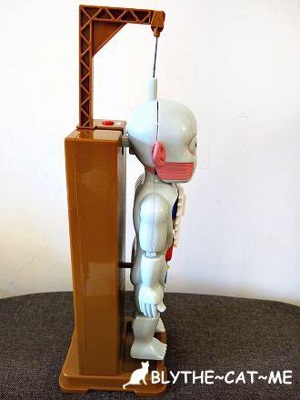 人體模型 (18).JPG