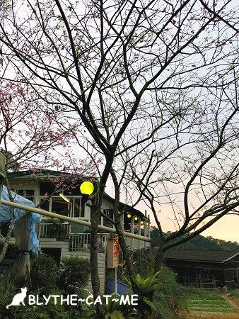 清泉山莊 (42).JPG