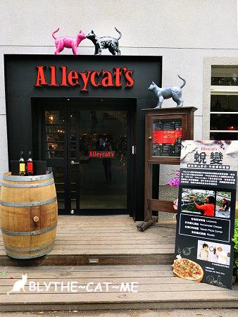 Alleycats (3).JPG