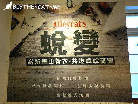 Alleycats (36).JPG