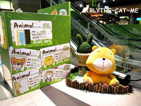 動物有限公司 (18).JPG