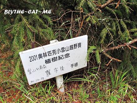 大雪山 (46).JPG