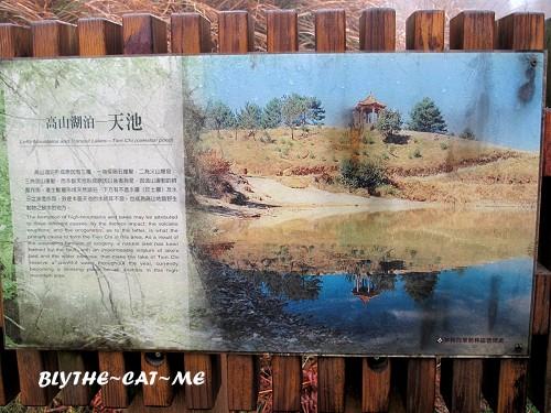 大雪山 (53).JPG