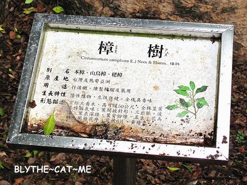 五福臨門 (4).JPG