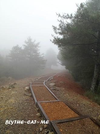 大雪山 (48).JPG