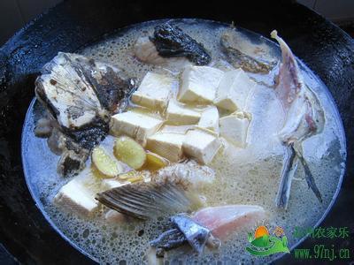 蔥燒豆腐鰱魚.jpg