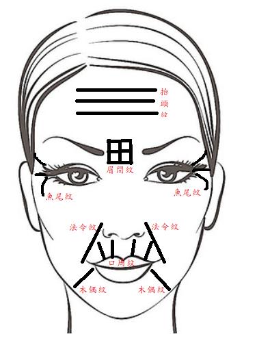 面部皺紋.png