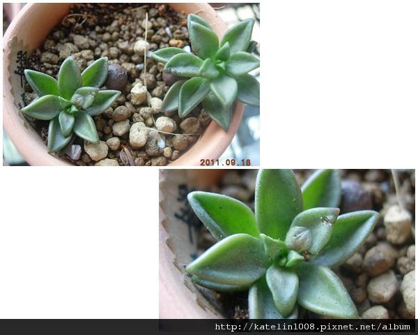 2011-9-19-05.jpg