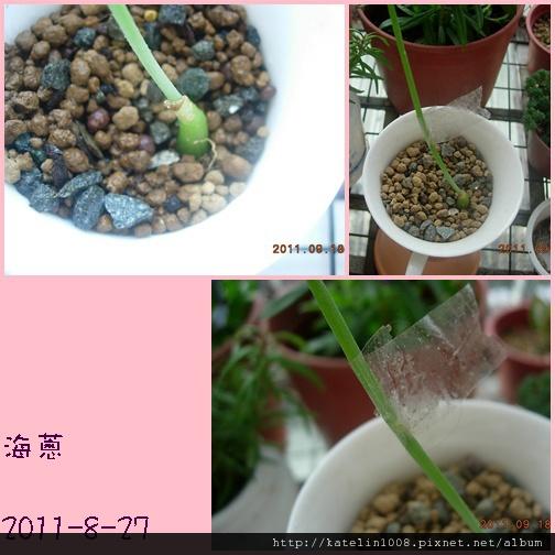 2011-9-19-02.jpg