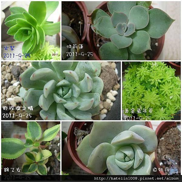2011-9-25-01.jpg