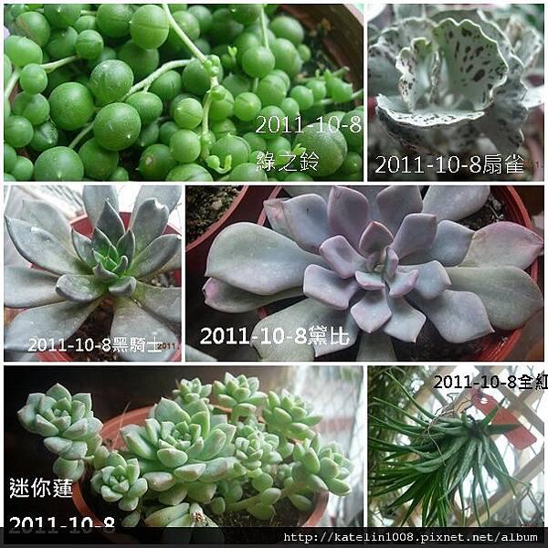 2011-10-8-01.jpg