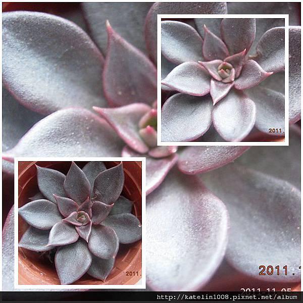 2011-11-05-04.jpg